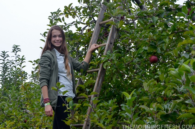Rockin' the Triple Aught Designs Valkyrie Hoodie LT while apple-picking at JH Stepps Hillcrest Orchard in Hendersonville, NC.
